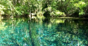 Oakmont Residents' Explorers' Guide: Silver Springs