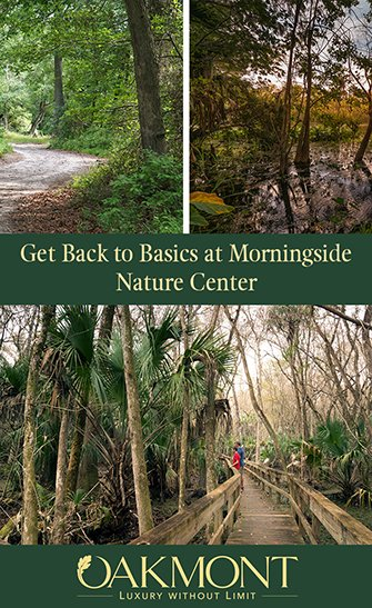 Get Back to Basics at Morningside Nature Center