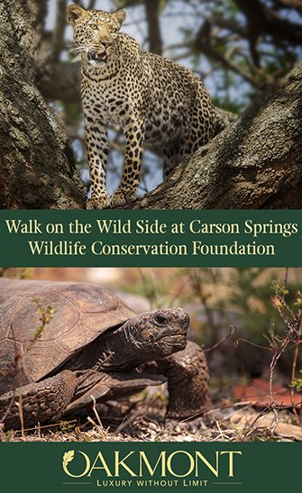 Walk on the Wild Side at Carson Springs Wildlife Conservation Foundation