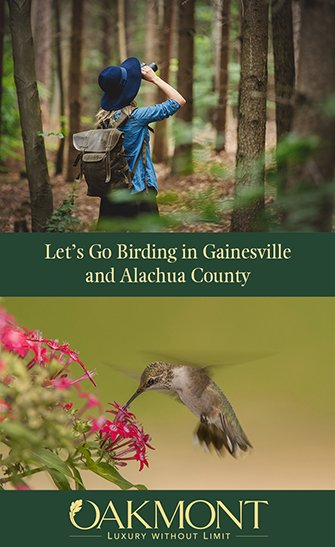 Let's Go Birding in Gainesville and Alachua County