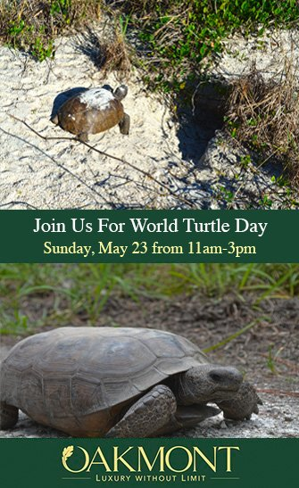 Oakmont World Turtle Day Event